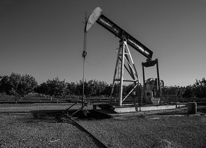 On the North Fork of the Kings, which takes a small portion of the Kings towards Tranquiility, Calfornia, an abandoned oil pump stands in the middle of a newly planted orchard.